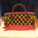 Checker Board Purse