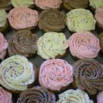 Assorted Cupcakes - Sprinkles