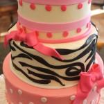Zebra Stripes and Dots